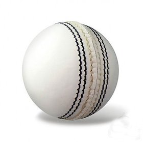 PARADISE COLLECTION SG 6 white  Cricket Leather Ball  (Pack of 6, Whit