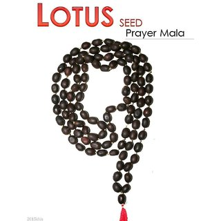 Lotus Seed Kamal Gatta Japa Mala 108