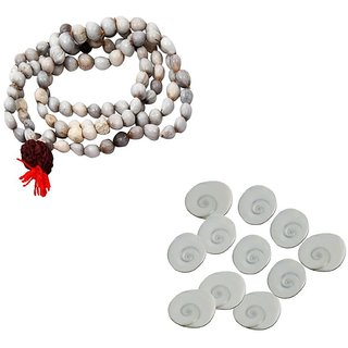 Combo Of Energized Original Seeds Vaijanti Mala  Set Of 11 Gomati Chakra for Mystic Lakshmi Pooja  Rosary for Attracti