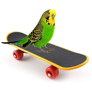 Birds Toy Skates Imported -Good movingg toy for Parrot  Birds to Play with