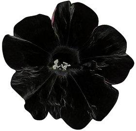 Futaba Black Velvet Petunia Seeds - 100 Pcs