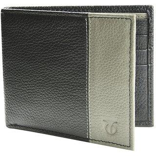 Titan Mens Grey Wallet