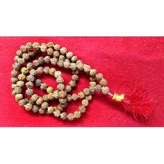 Pathri-Chikna Rudraksha Rosary 8mm