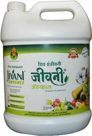Jivani Advance 5L