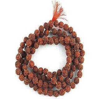 Natural 5 mukhi Rudraksha Mala ( shiv shakti rudraksha ) Jaipur Gemstone