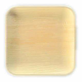Read Egale Disposable Party Plates- Areca leaf plates - Palm leaf plates - 100 Natural eco friendly plates 10 Inch X 10