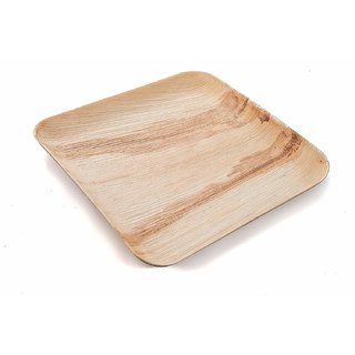 Disposable Party Plates- Areca leaf plates - Palm leaf plates - 100 Natural eco friendly plates - Bio degradable Square