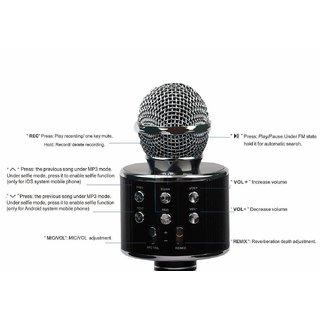 DGN WS-858 Wireless Karaoke Handheld Microphone USB KTV Player Bluetooth Mic Speaker