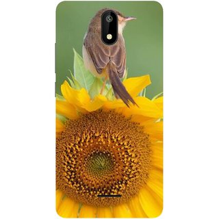 Back Cover for Micromax Spark 4G (Multicolor,flexible,Case)
