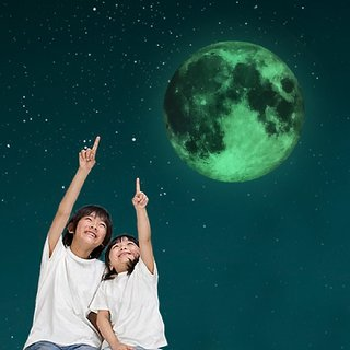 SKY HOME DECOR Massive Glow-in-the-Dark Full Moon Wall Sticker Wall Sticker for Home Dcor