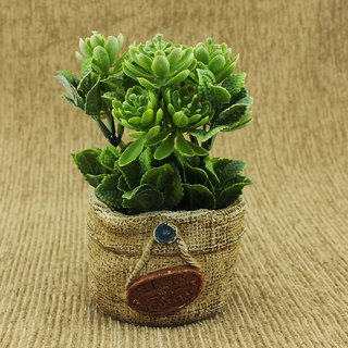 ZEVORA 6 Inch Artificial Plants for Indoor/Outdoor Home, Office, Garden Lawn Decoration with Pot for Gift  Home Decor