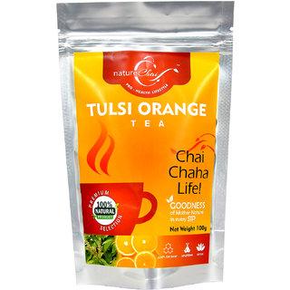 nature Chai Tulsi Orange Tea Pack of 3 (100 gm each)