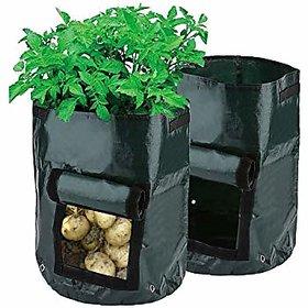 Potato Grow Bag - Pack of 2 pcs