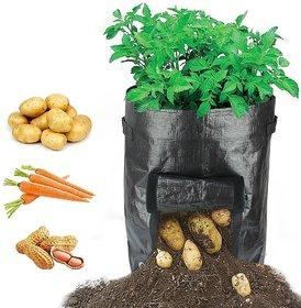 Potato Grow Bag - of 2 pcs pack