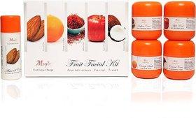 Nature Essence  Fruit Facial Kit,200g