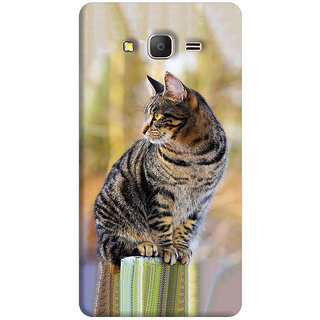 FABTODAY Back Cover for Samsung Galaxy J2 Ace - Design ID - 0800