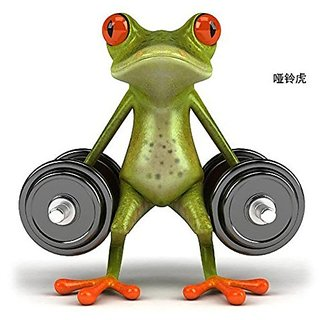 Delhitraderss Funny Green 3D Dumbbell Frog Car Stickers Car Window Door Vinyl Decal 19cm x20cm