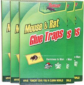 Evershine Mouse Glue Pad/ Rat Catching Pad (Set of 3)