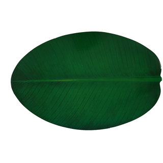 E-Retailer PVC Table Placemats Natural Banana Leaves Design (6 Placemats)