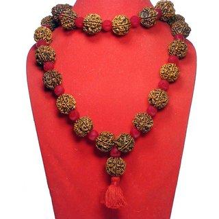 Kesar 4 Mukhi Rudraksha 32+1 Beads Kantha Nepal 18-20mm