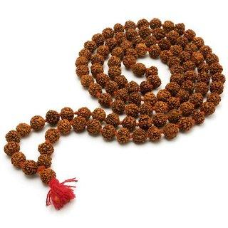 Virasat Rudrakash Mala  8mm Beads