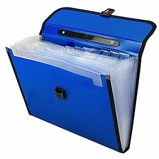 Plastic File Folder With 13 Pockets, Handle, Index Tab, A4 Size (Blue)