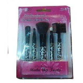 Professional Make Up Brush Set (Pack of 5)
