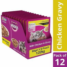 Whiskas Kitten Wet Cat Food, Chicken in Gravy, 85 g (Pack of 12)