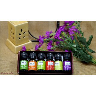 Asian Aura Aroma Oil for Diffusers / Candles /Potpourri for Home/Office in pack of 6 oil in 10 ml size