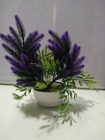 Bonsai Tree in Planter