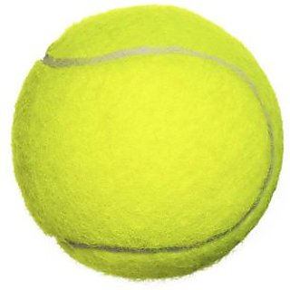 Tennis Cricket Ball Pack Of Two Balls