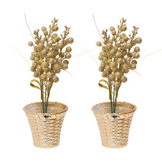 Golden Flower Slim Shape Flower Pot For Home Decoration & Gifting Purpose Set of 2