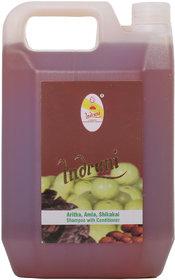 Indrani Aritha, A mla, Shikakai Shampoo With Conditioner 5 litre